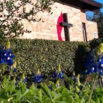 Trinity UMC Duncanville Building with Bluebonnets
